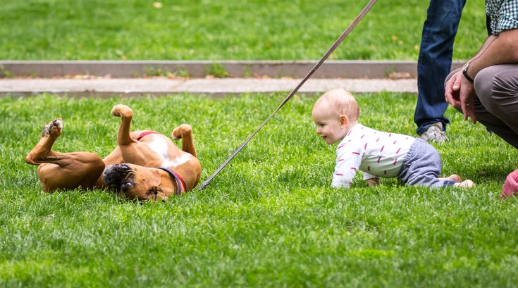 Carroll - Dog and Toddler in Rittenhouse Square