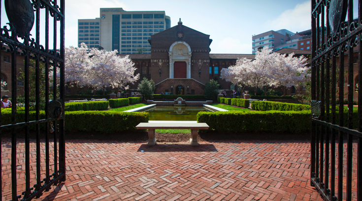 Spend happy hour in the Penn Museum courtyard