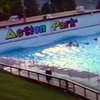 Action Park documentary