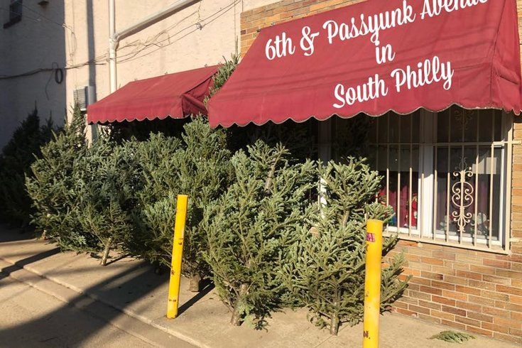 South Philly Christmas Trees