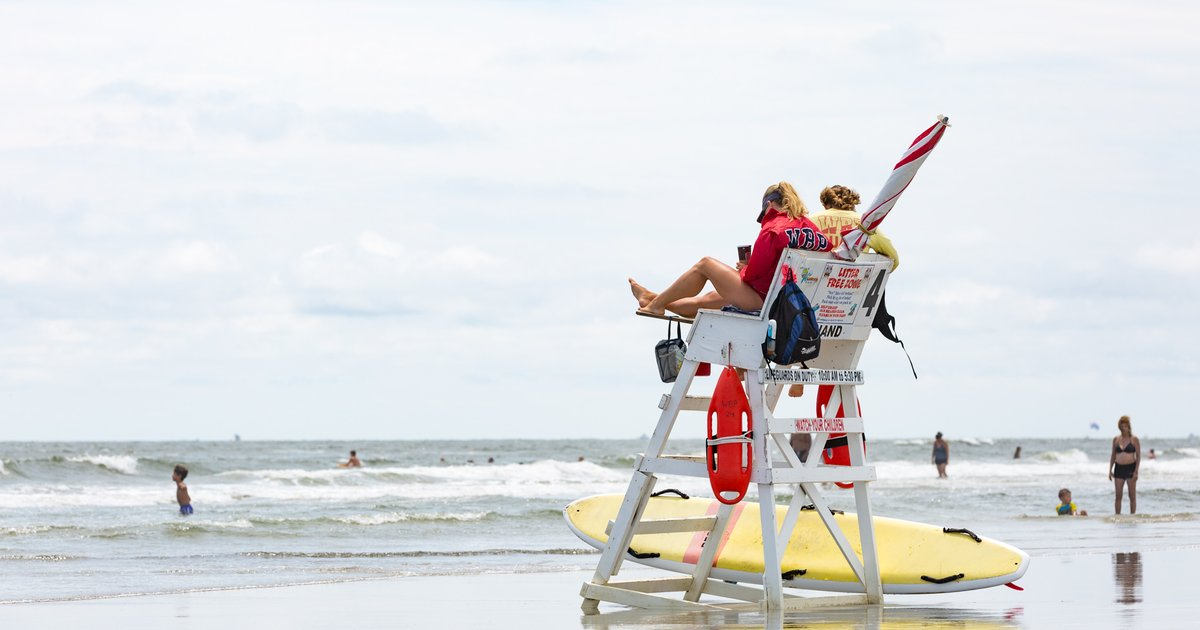 Rehoboth Beach lifeguards scrutinized for tossing dying shark in trash can - EpicNews