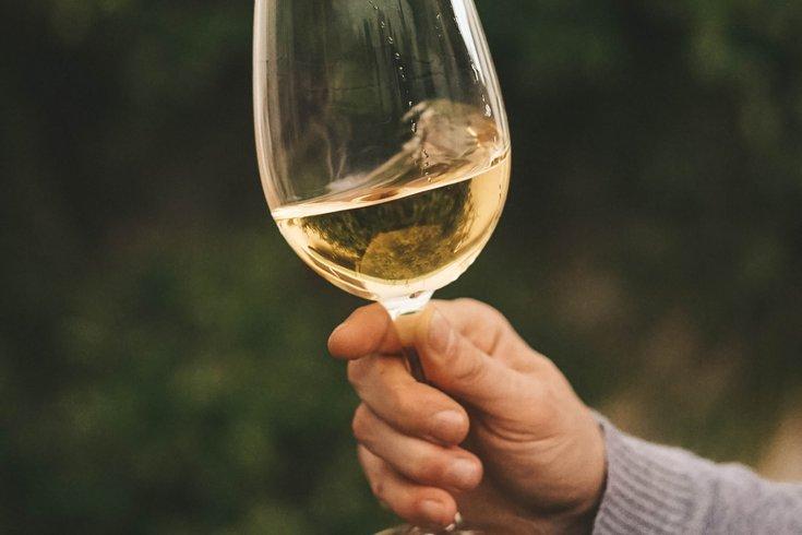 Virtual wine tasting with Tria