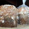 Osteria Panettone Flash Sale