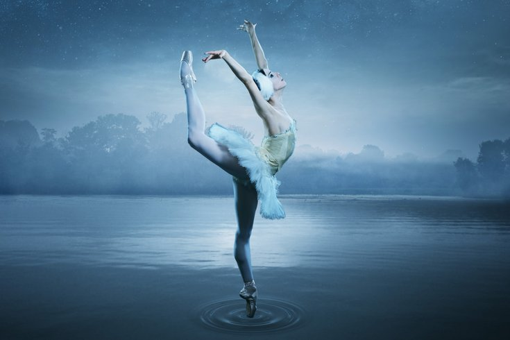 Swan Lake Creative for PA Ballet