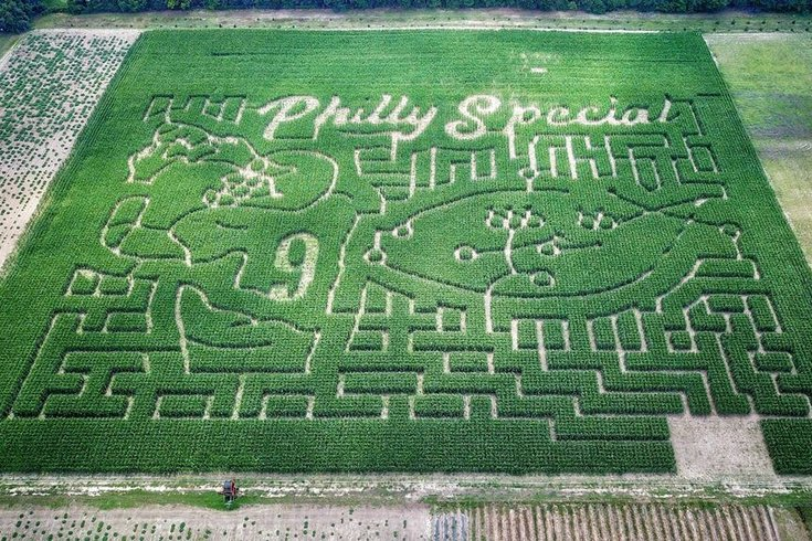 Philly special farm
