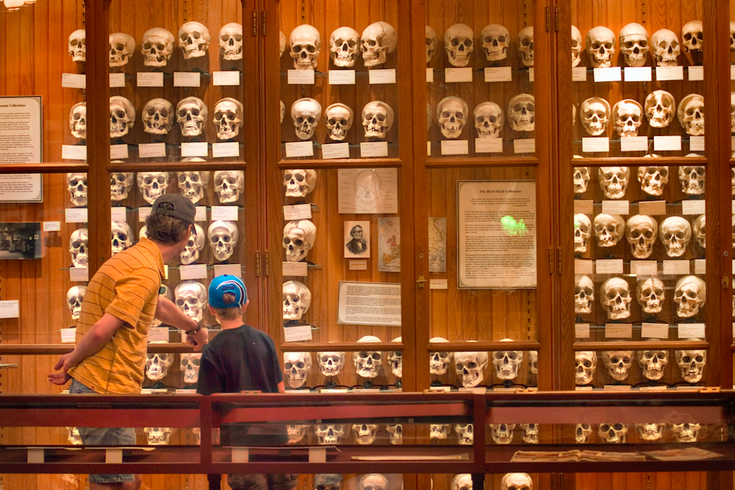 'Unseen' Mutter Museum exhibit