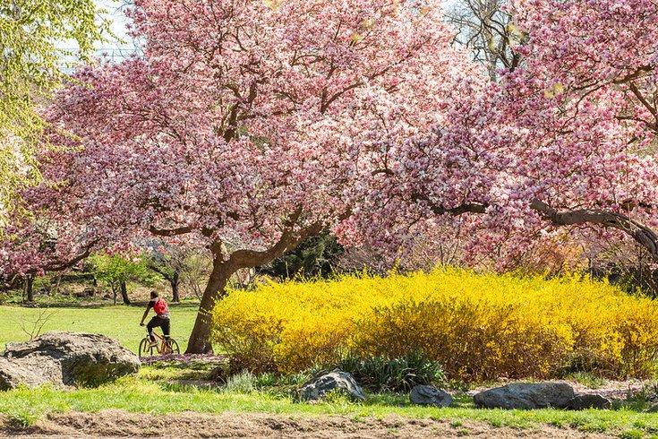 Outdoors in Philadelphia - person riding bike