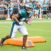 Carroll - Eagles Public Practice Darren Sproles