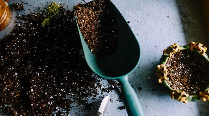 Gardening happiness study