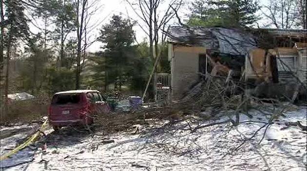 Wind knocks down Delco tree
