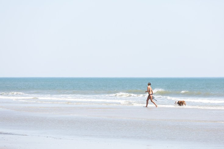 New Jersey beaches fecal bacteria
