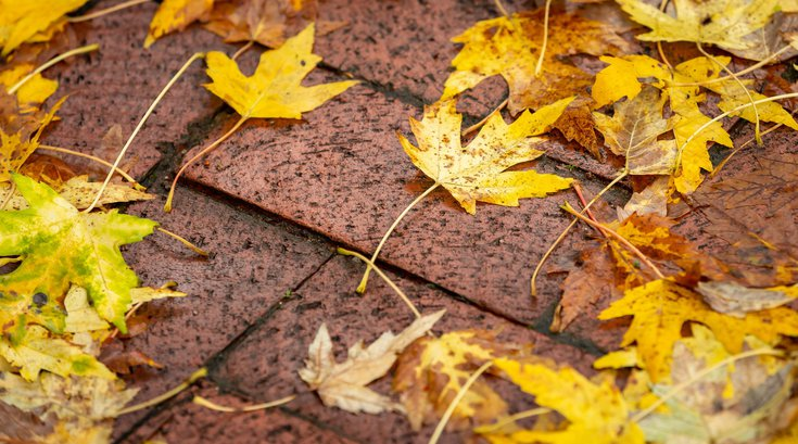 Fall at Peddler's Village