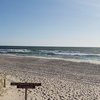 Minke whale stranded Island Beach State Park