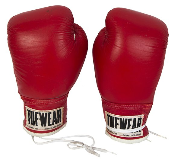 91921 Rocky boxing gloves.jpg