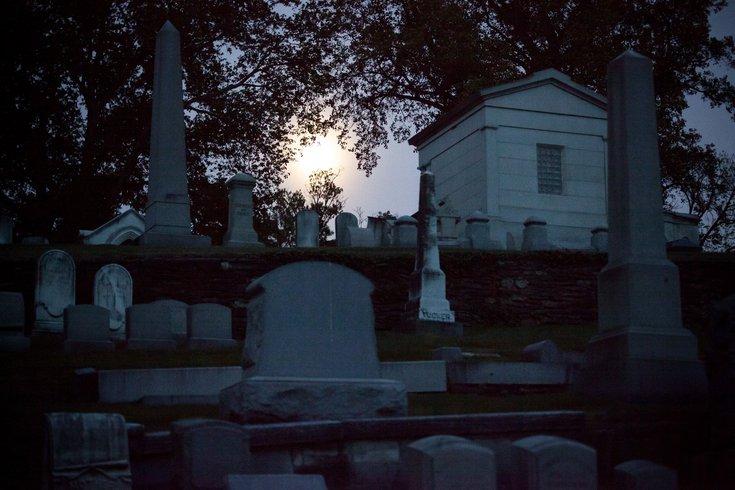 Cinema in the Cemetery