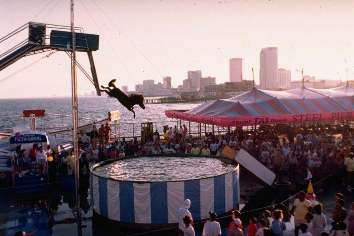 Diving Horse Atlantic City