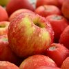 Apples Bad Cholesterol Heart Health