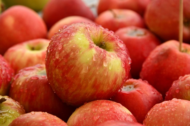 Apples Bad Cholesterol Heart Health