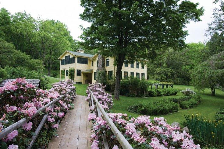 Benton Home Rhododendrons