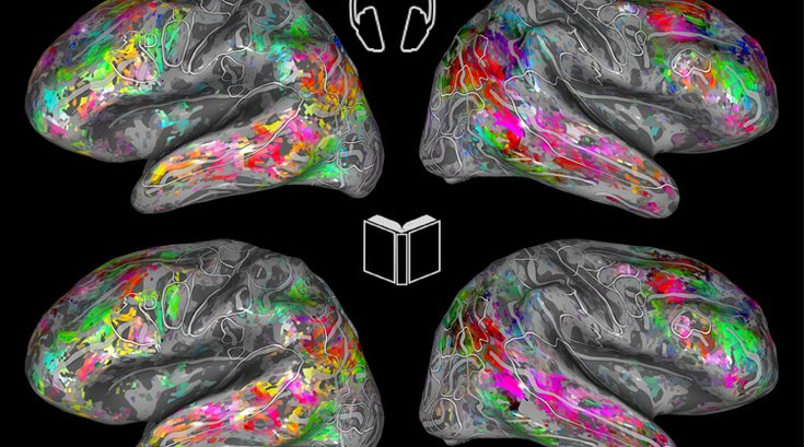 Brain Maps Berkeley Reading Books Listening Audiobooks study