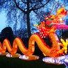 Philadelphia Chinese Festival Dragon