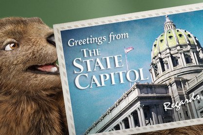 Gus the Groundhog is back as Pa  Lottery mascot | PhillyVoice