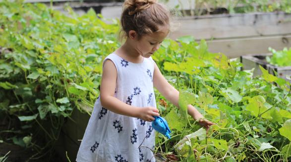 Child outside in garden