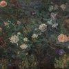 Rose Garden PAFA