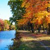 Lehigh Valley fall foliage