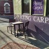 Flying Carpet Cafe & Bar