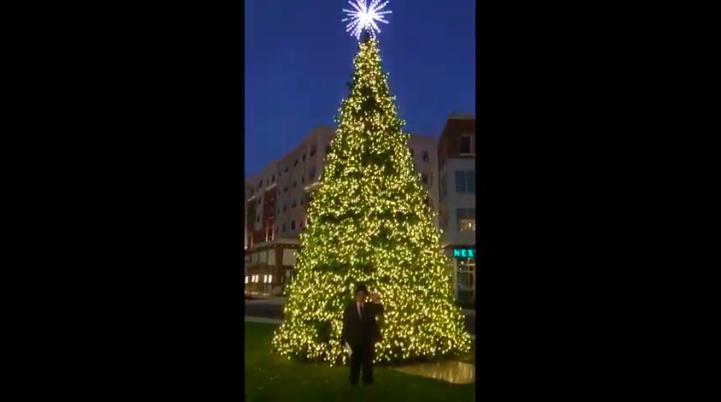 Glassboro Christmas Tree