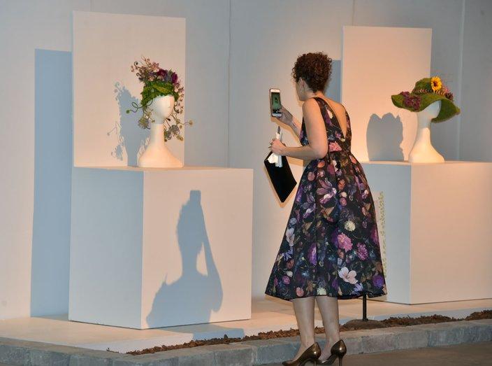 Dillon - Flower Show