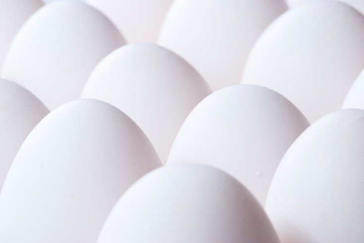 Hard-boiled eggs Listeria