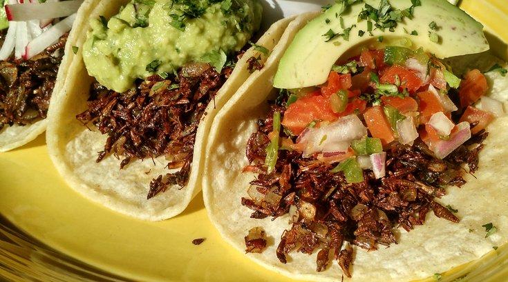 grasshopper tacos at Café Ynez