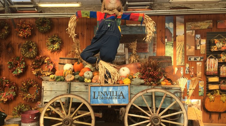 Fall at Linvilla Orchards