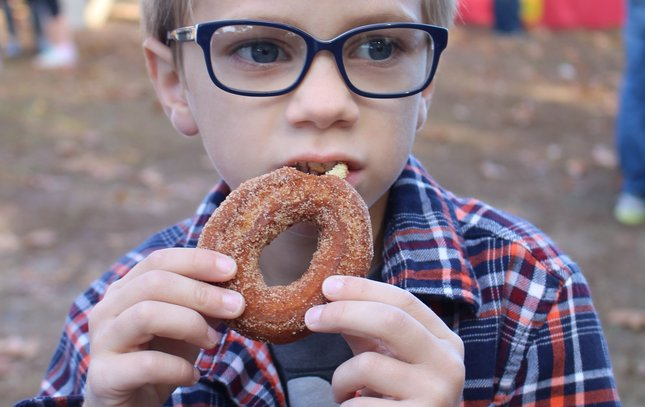 Linvilla Orchards apple cider donuts