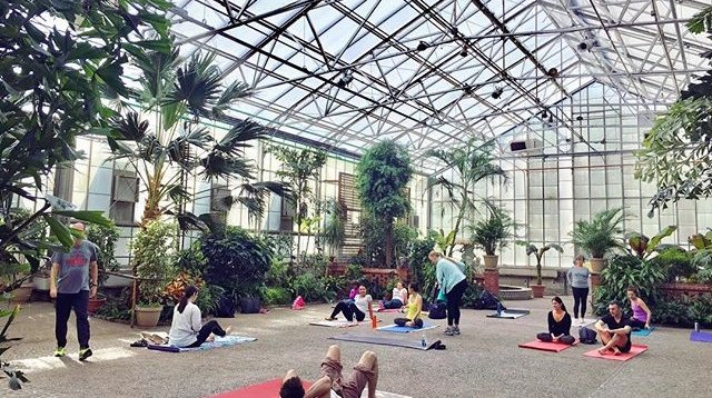 Yoga at the Horticulture Center