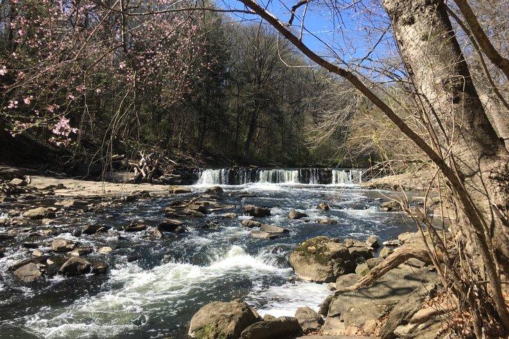 Wissahickon Valley Park Waterfall