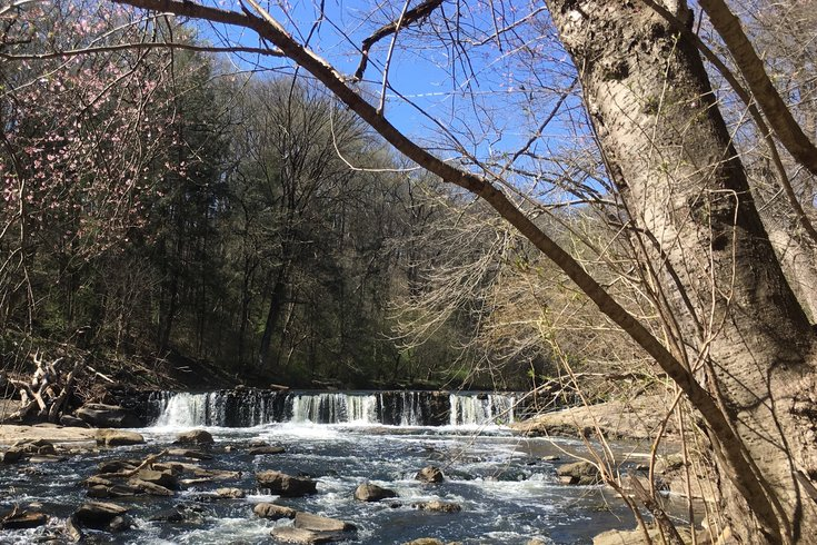 Waterfall in Wissahickon