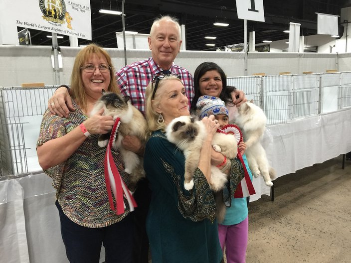 Cat Show Winners