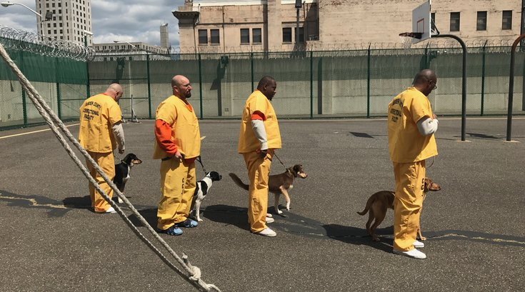 Inmates train dogs