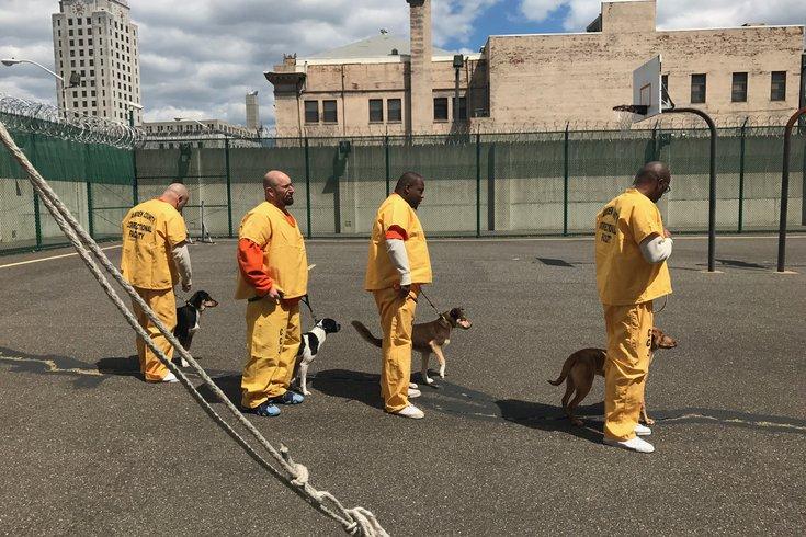 Win-win-win: Inmates train rescue dogs for military veterans
