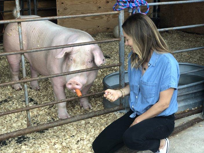 Jen-Utley-Pig_080819