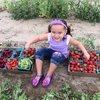 06152015_JohnsonsFarm