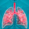 Lung Penn Medicine