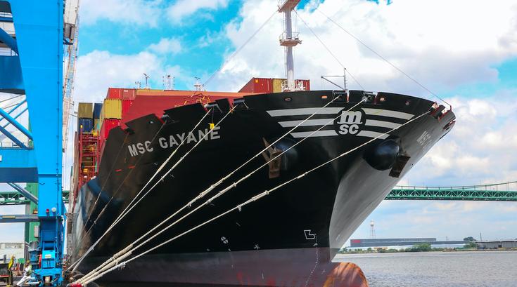 MSC Gayane