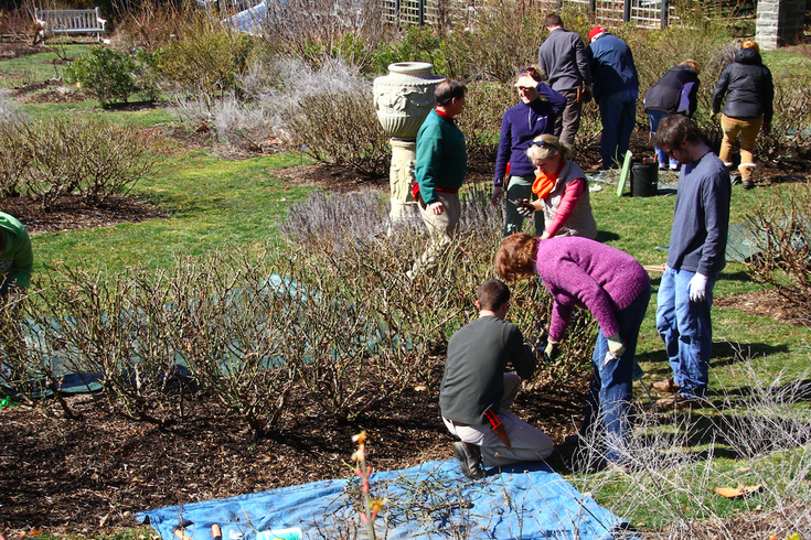 Gardening workshop at Morris Arboretum