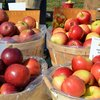 Peddler's Village Apple Festival 2017