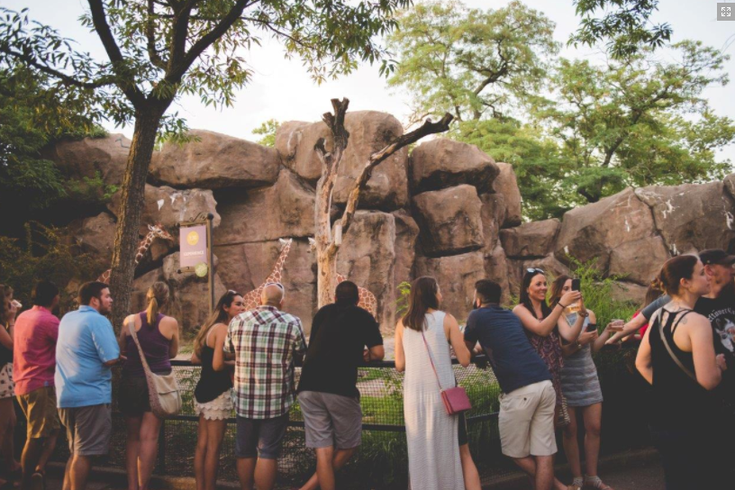 Image result for oktobearfest philadelphia zoo