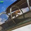 03192015_Zoo